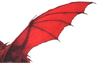 The Dragon Wing