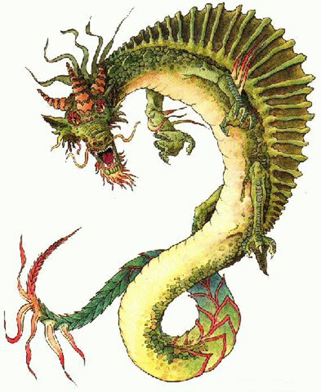 http://www.draconian.com/dragons/Images/Chinese%20Dragons/Chinese-Dragon-Green-23-large.jpg